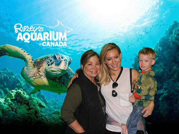 photoport_ripleys_aquarium_toronto_02