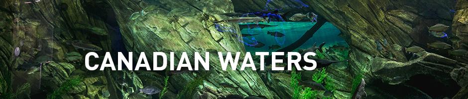 canadian waters exhibit in toronto