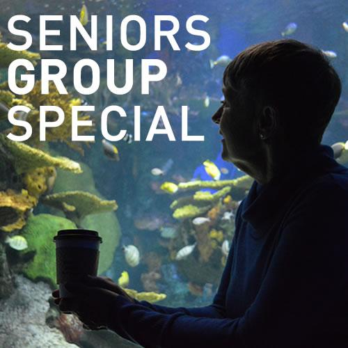 Senior-Group-Special