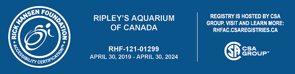Ripley's Aquarium of Canada is proudly Accessibility Certified by the Rick Hansen Foundation