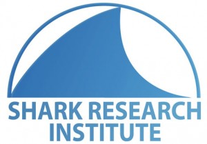 SharkResearchInstitute