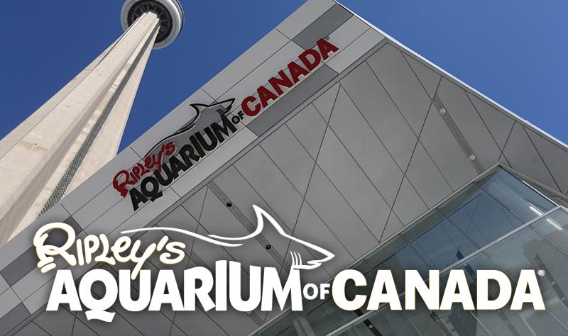 Hours Of Operation Ripley 39 S Aquarium Of Canada