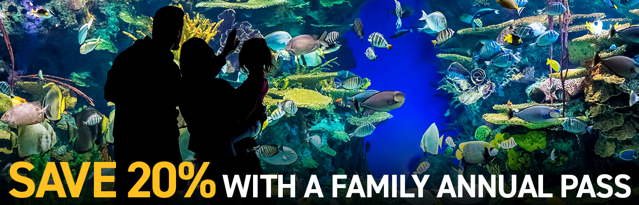 Sav 20% with a Family Annual Pass