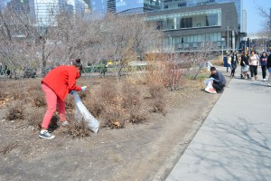 Clean-Toronto-Together (1)