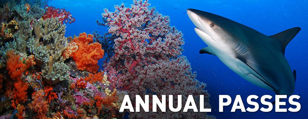 AnnualPasses