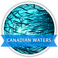 canadian waters