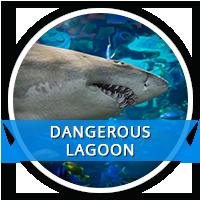 dangerous lagoon