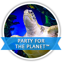 Party for the Planet
