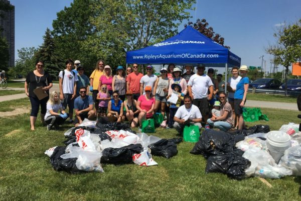 ripley's aquarium shoreline cleanup
