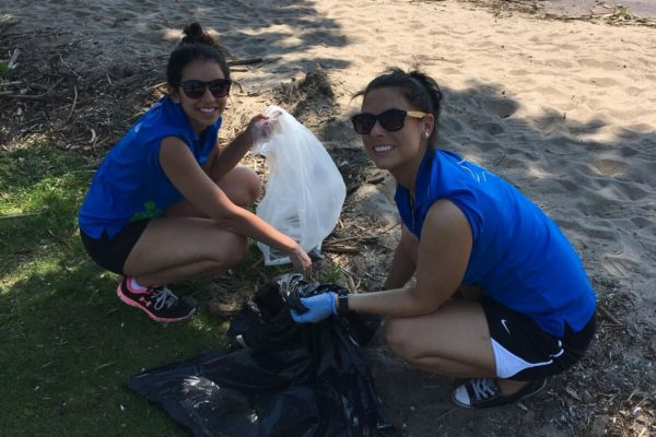 shoreline cleanup june 2017