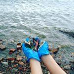shoreline cleanup 2016