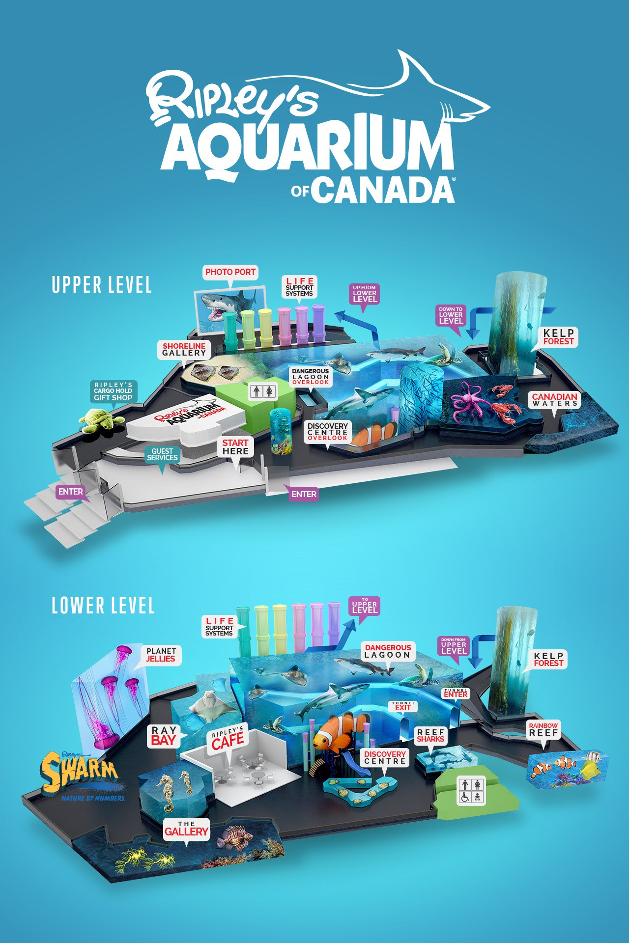Fish aquarium in downtown toronto - Weekly Operating Hours