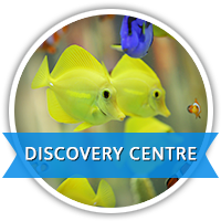 discovery centre