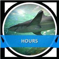 Aquarium Hours