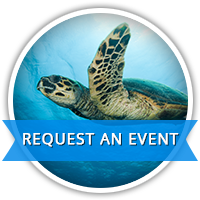 Request an Event