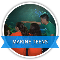 Marine Teens