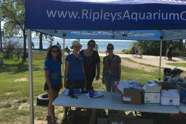 Ripley's Aquarium of Canada staff members celebrate Coastal Cleanup Day 2017.
