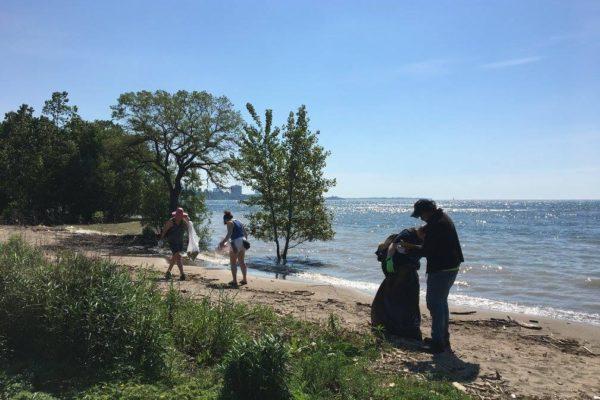 shoreline cleanup coastal cleanup day 2017
