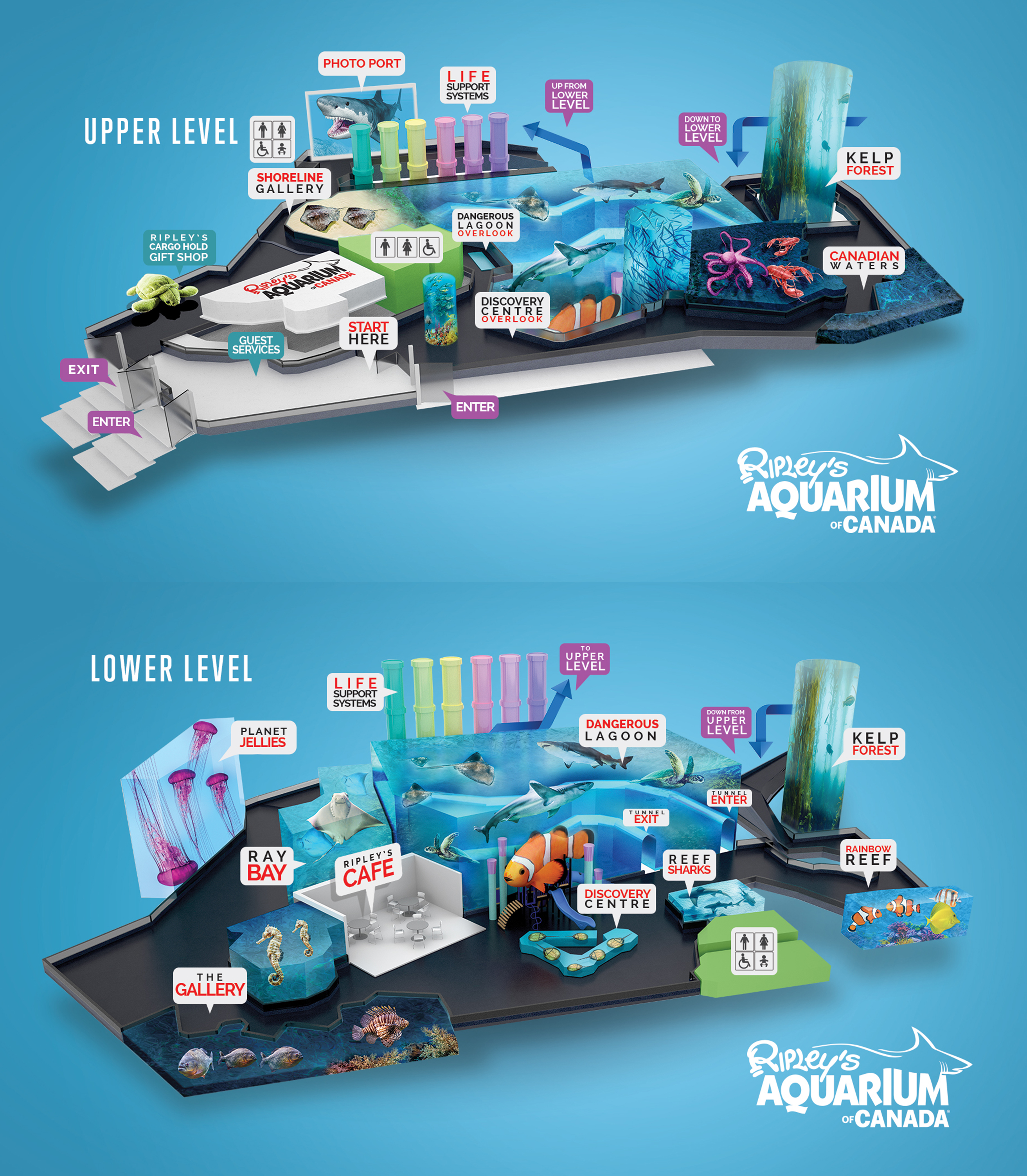 Teacher Resources - Ripley\'s Aquarium of Canada