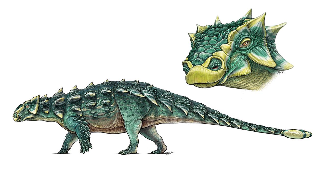 Zuul Dinosaur