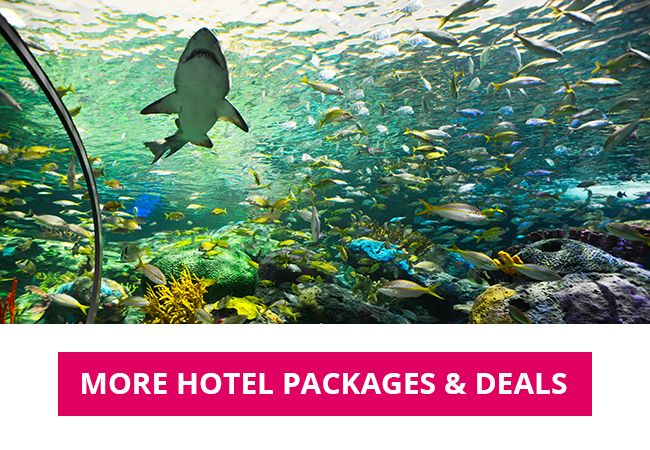 more hotel packages and deals