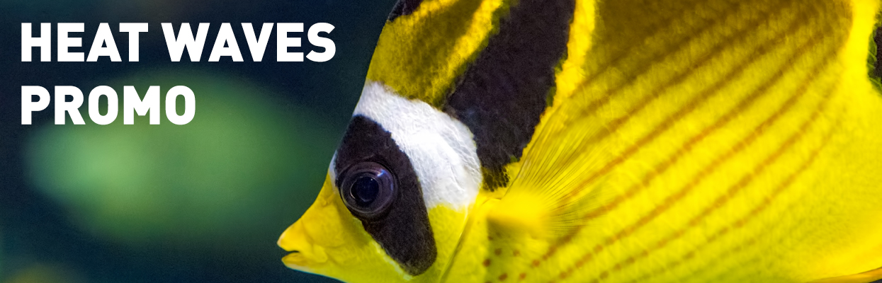 PROMOTIONS and CONTESTS - Ripley's Aquarium of Canada