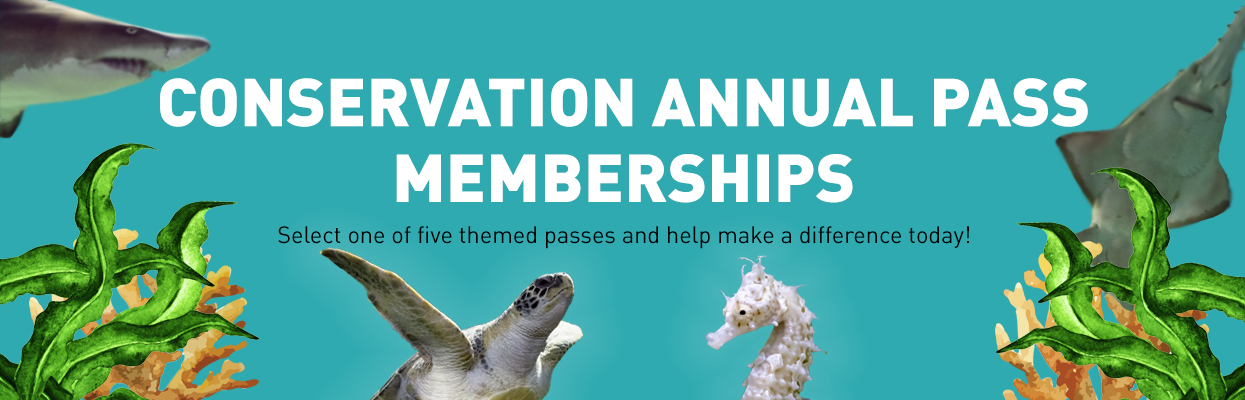 Conservation memberships