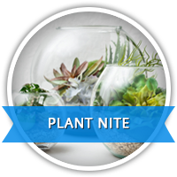 plant nite classes