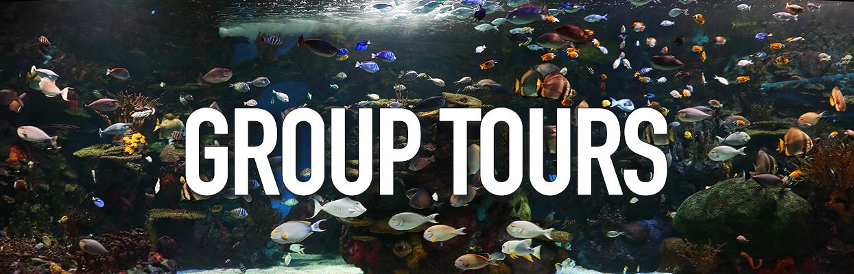 Ripley's Aquarium of Canada - Group Tours
