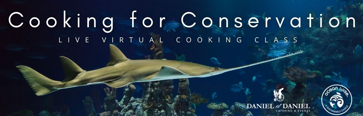 Cooking for Conservation Virtual Class