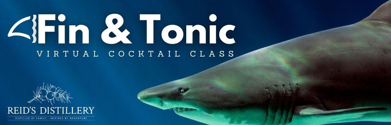 Fin and Tonic Virtual Class