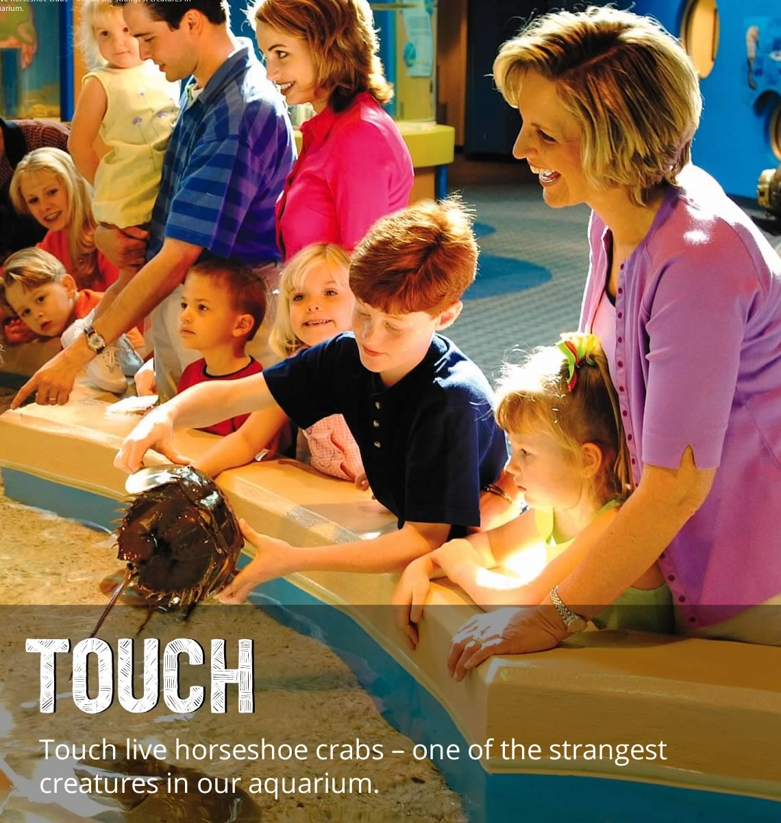 Discovery Center - Touch