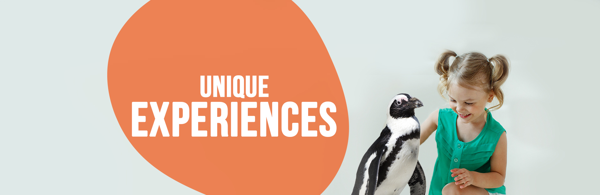 Header image for Unique Experiences page
