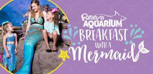 Breakfast with a Mermaid