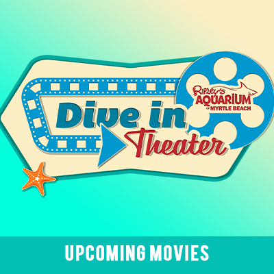Dive in theater image link