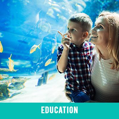 Education image link