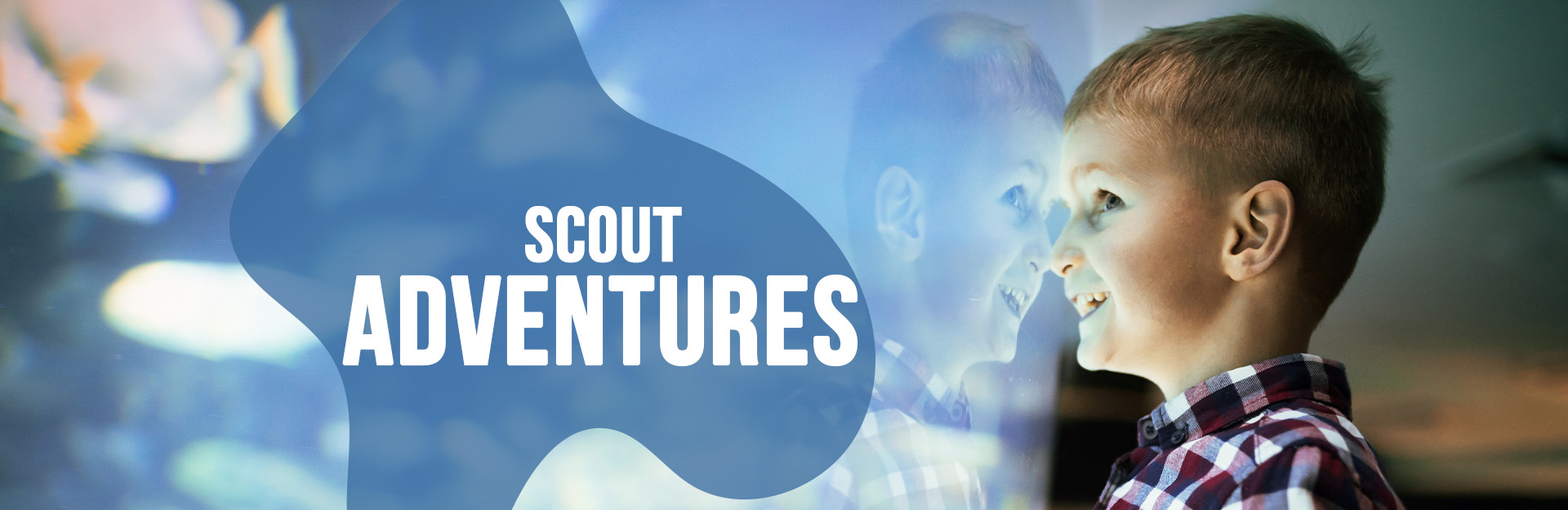 Header image of Scouts page