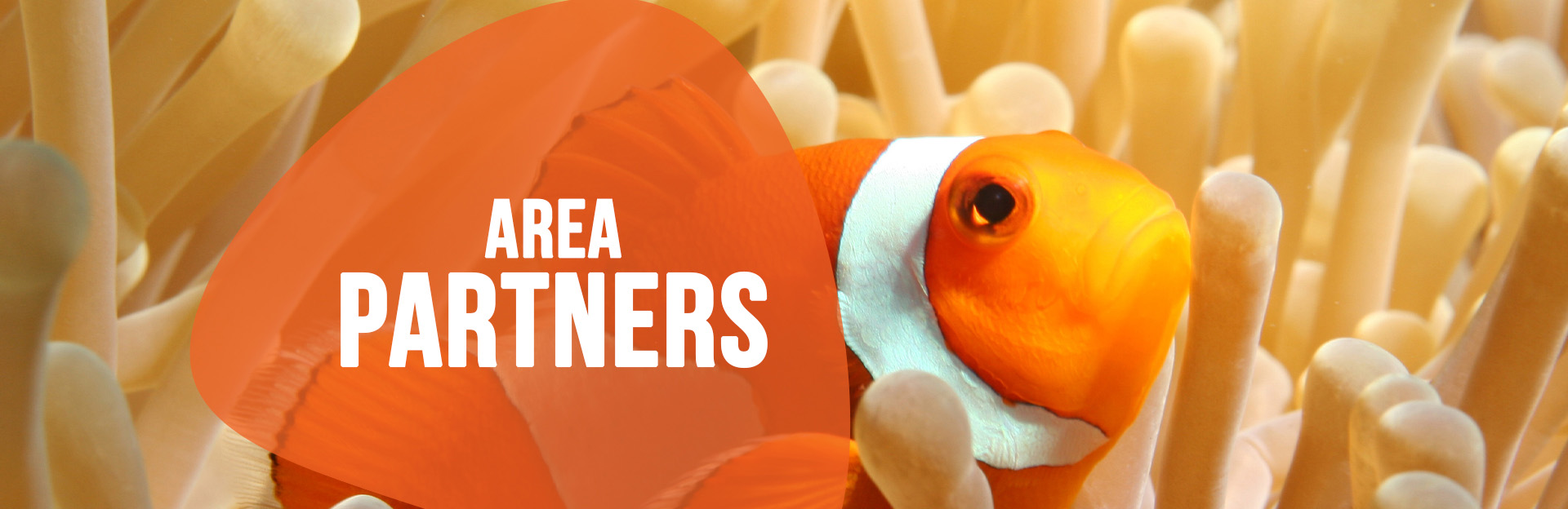 Header image for Area Partners page