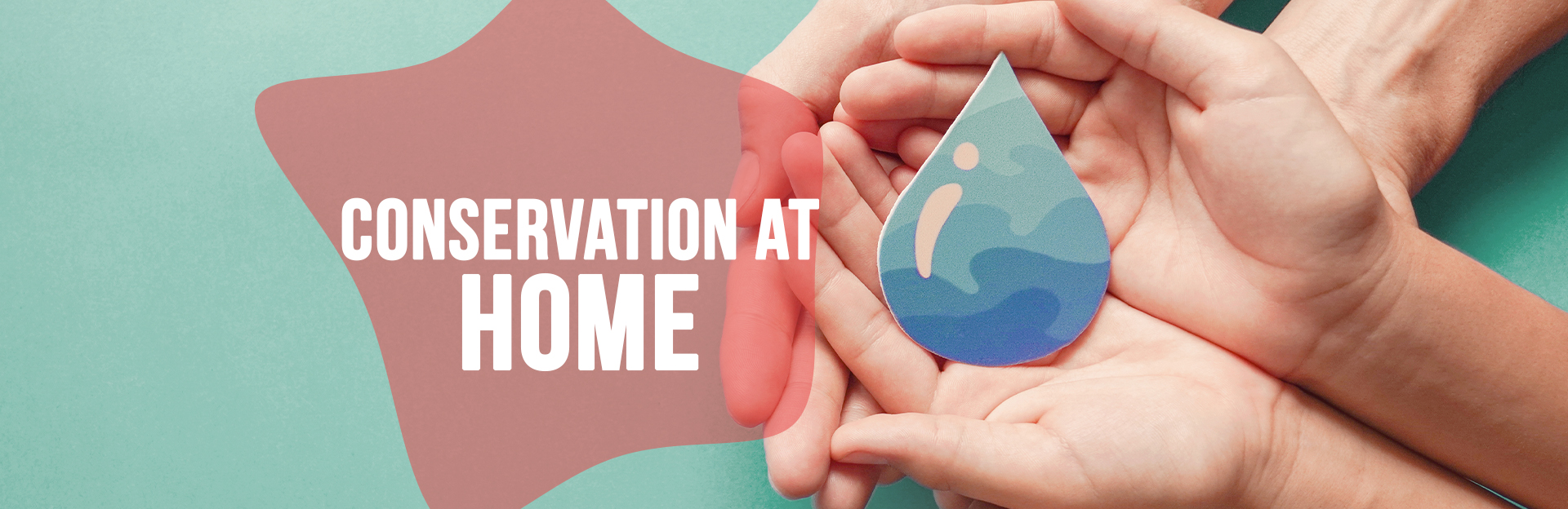 Header image for conservation at home page
