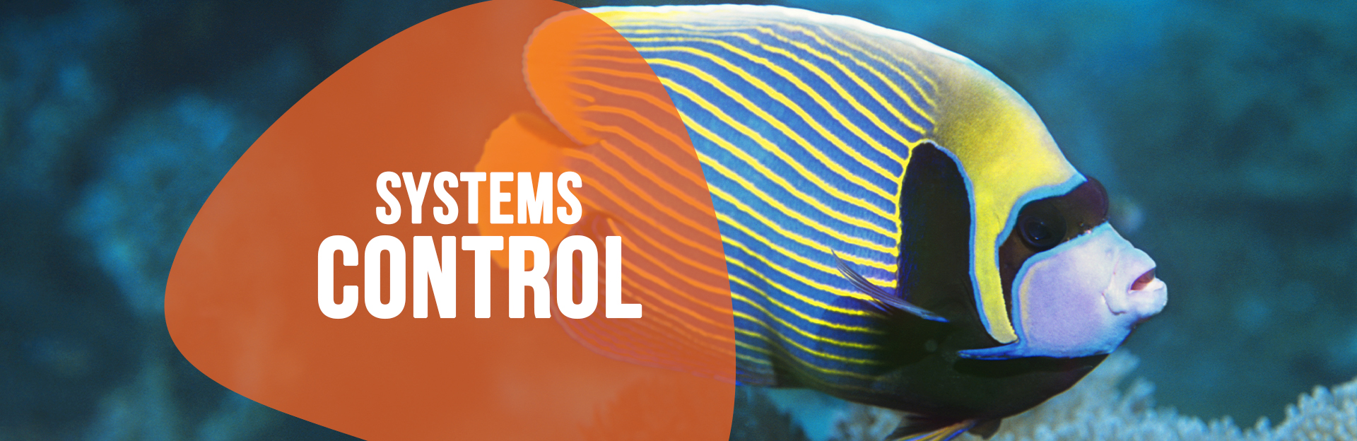 Header image for Systems Control page