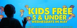 kids free webslider