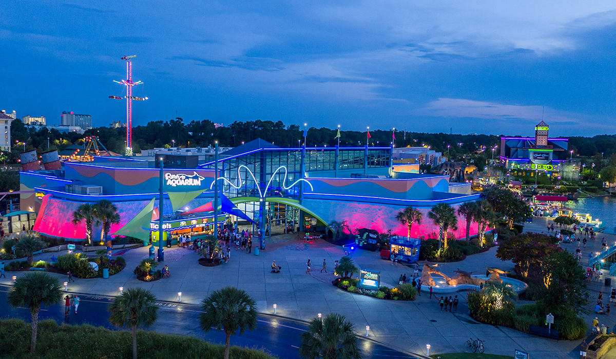 night aerial outdoor view of ripley's aquarium of myrtle beach