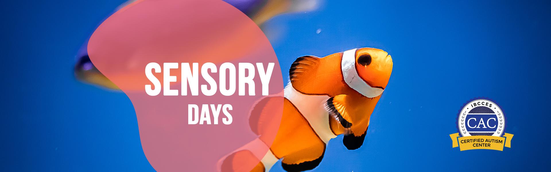 Ripley's Aquarium of Myrtle Beach Sensory Friendly Days