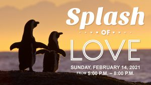 Splash of Love Event