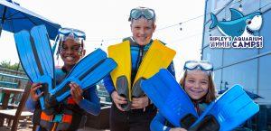 dive kids camp