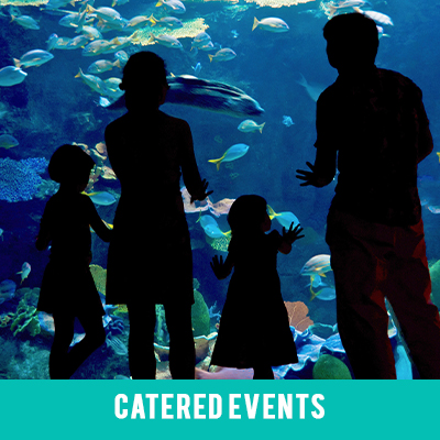 Image for Catered Events