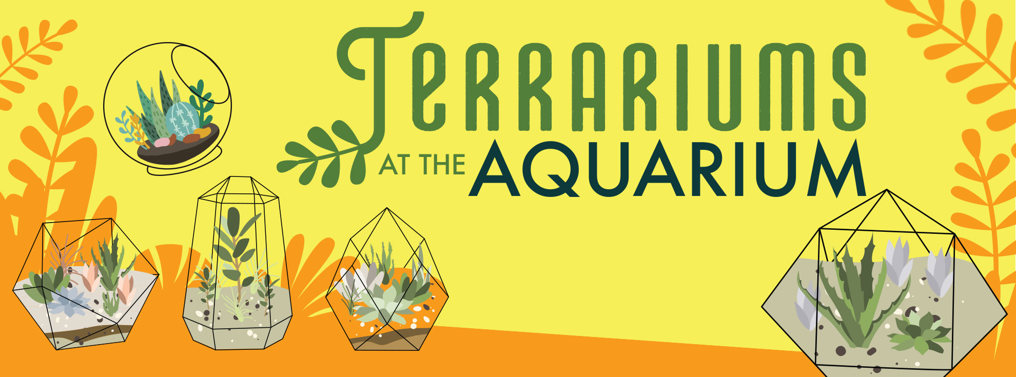 Terrariums at the Aquarium