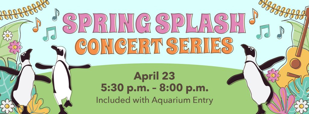 Spring Splash Concert Series
