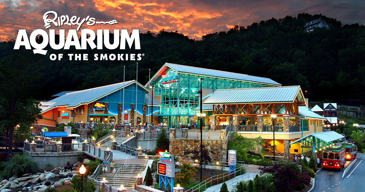 Ripley S Aquarium Of The Smokies Reports